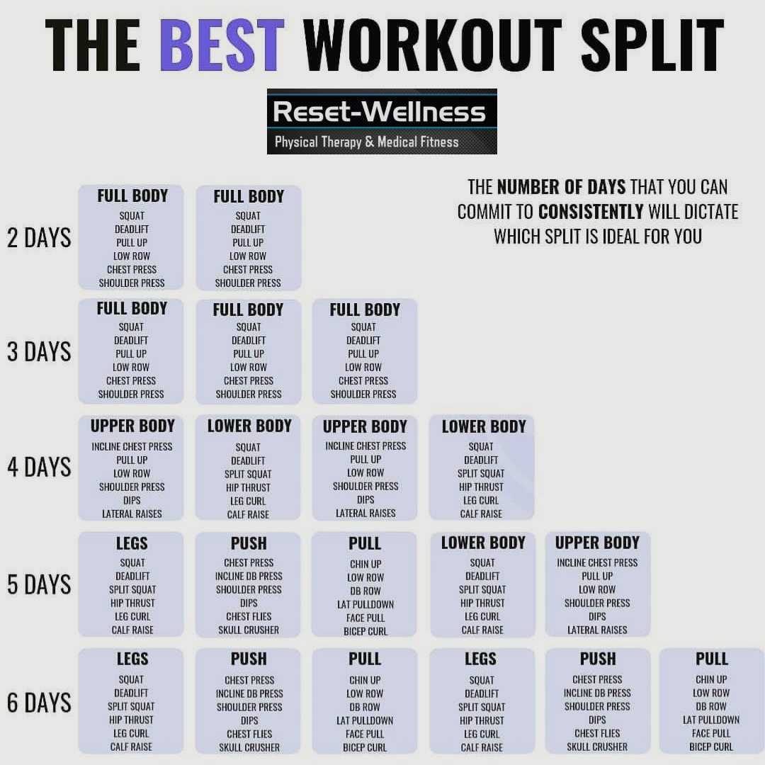 Workout Split Schedule | Reset-Wellness Physical Therapy